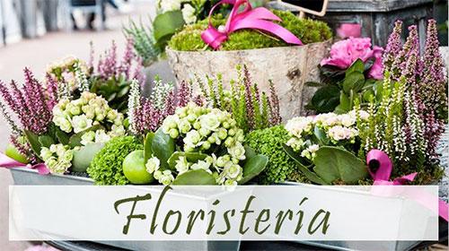 floristeria en Valencia