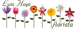 Luis hoyo floristas